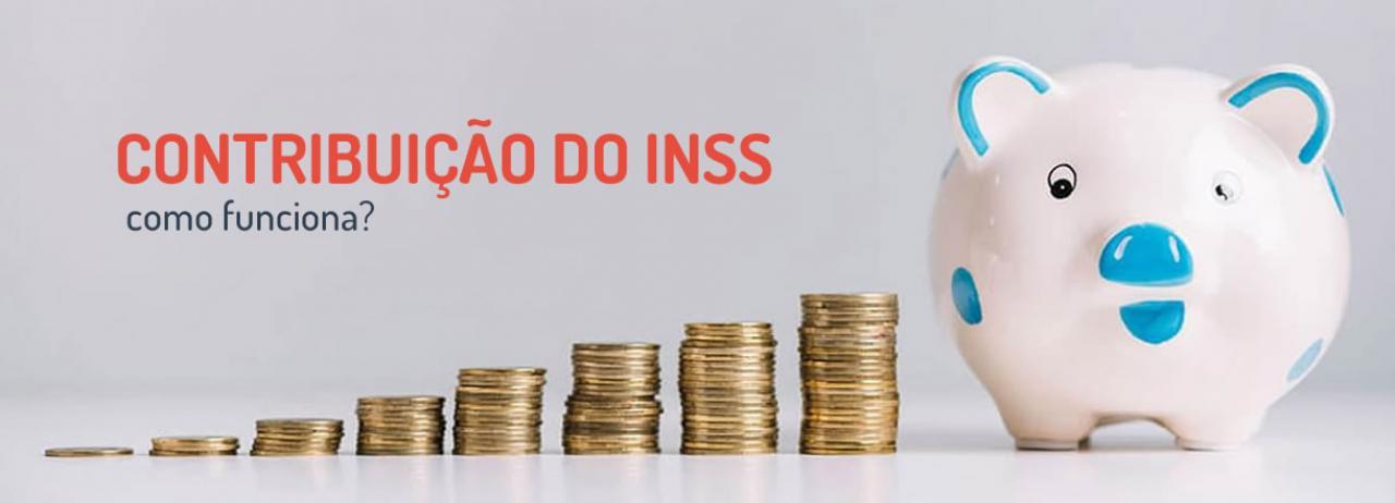 [Entenda o que é e como funciona a contribuição do INSS]